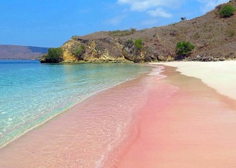 8-pink-beach-of-komodo